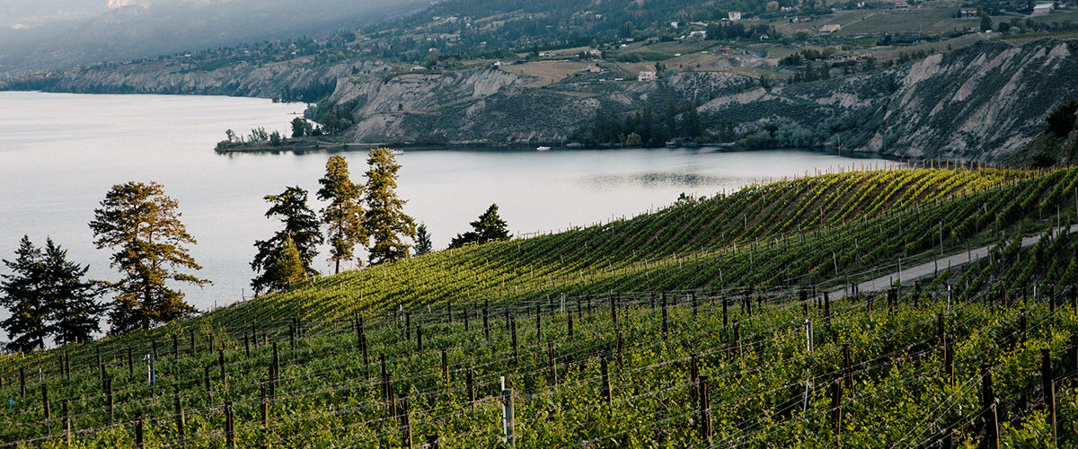 5 Great Winery Restaurants in BC's Okanagan Valley5 Great Winery Restaurants in BC's Okanagan Valley