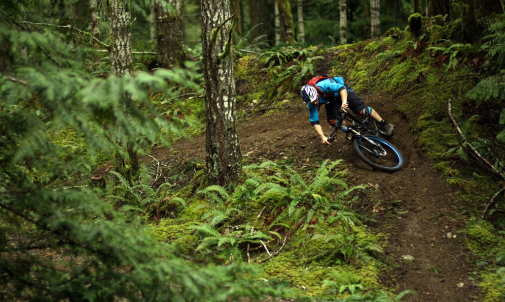 A mountain biker travels down a dirt path in the forest.