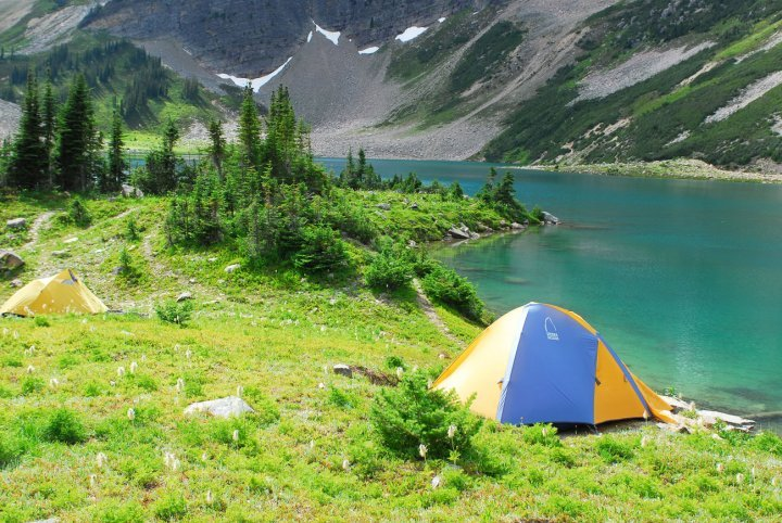 Two tents are pitched in a grassy area, overlooking the water and snowy mountains.