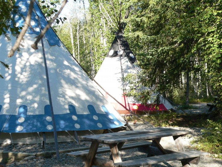 Two colourful teepees nestled in a wooded area.