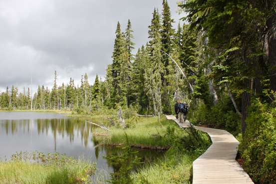 Hikers traverse a wooden plank trail that winds around the edge of a calm body of water.