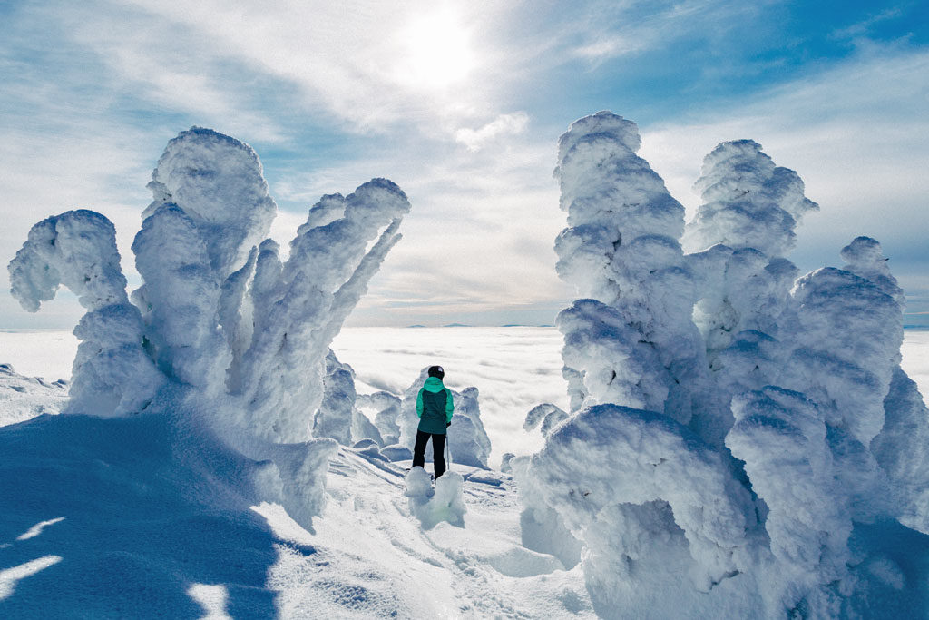 Big White Ski Resort's hauntingly beautiful snow ghosts.