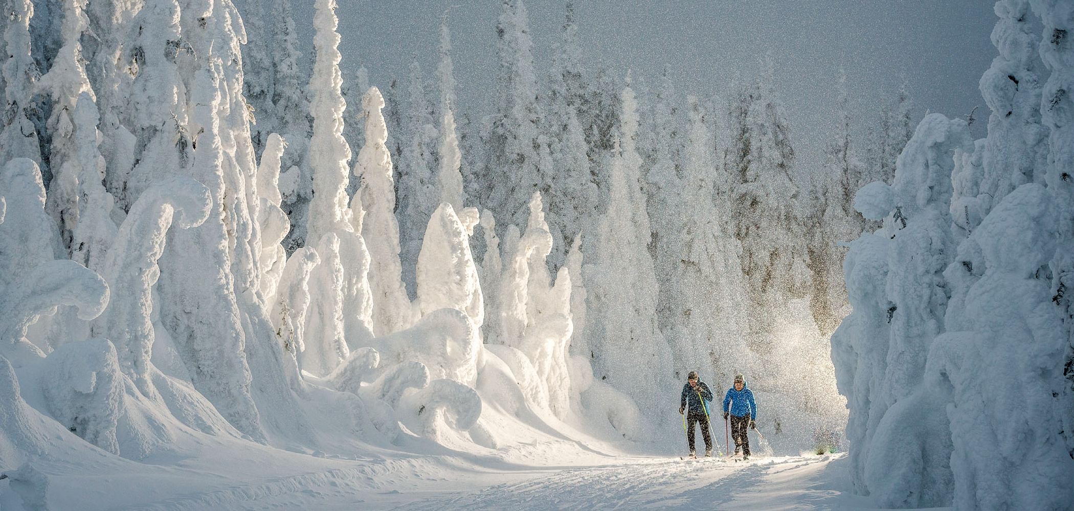 Cross-country Skiing in BC Canada