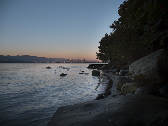 The pink skies of Vancouver at sunset from a beach in Stanley Park.