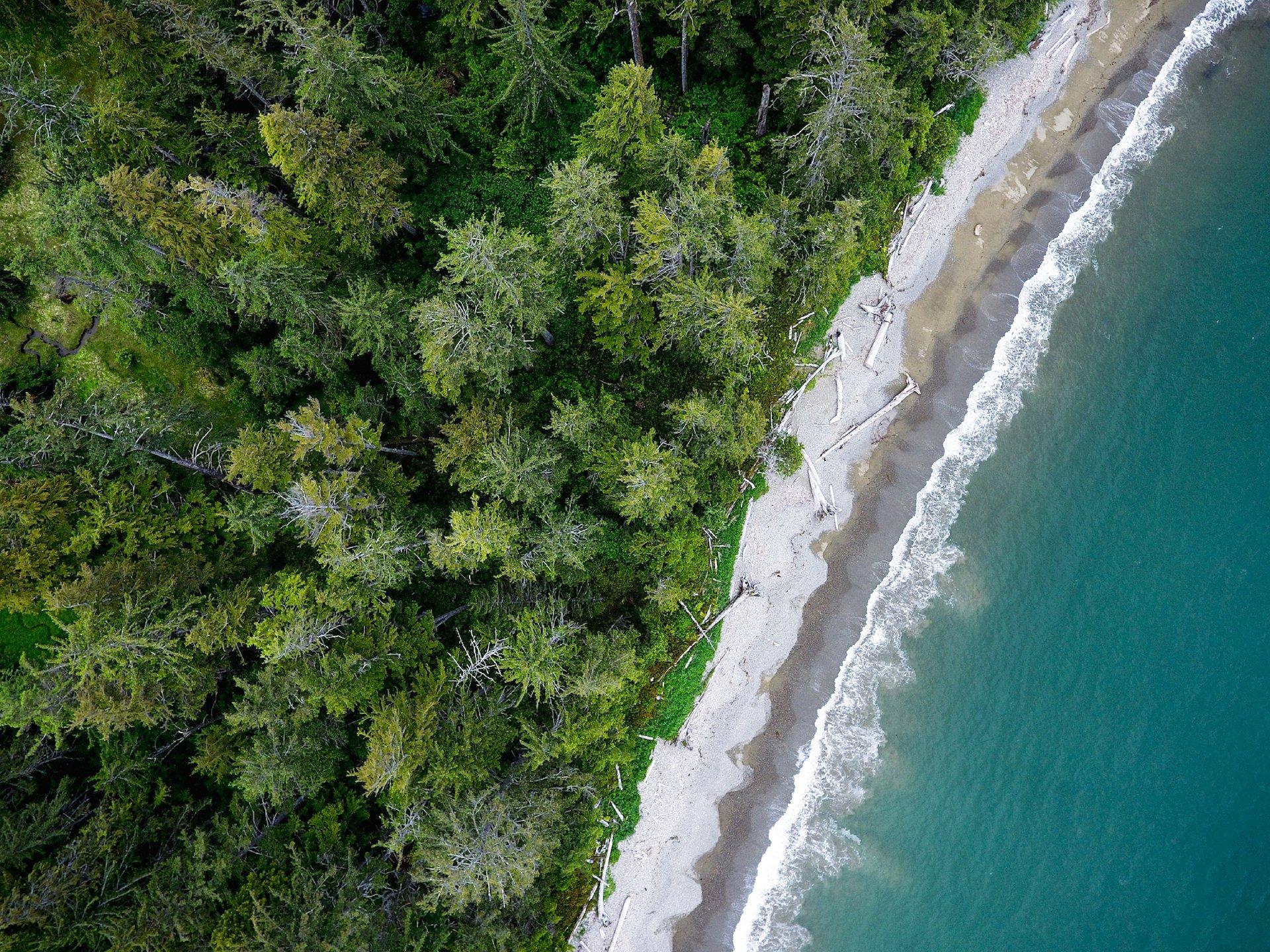 Aerial view of Rennell Sound coastline in Haida Gwaii