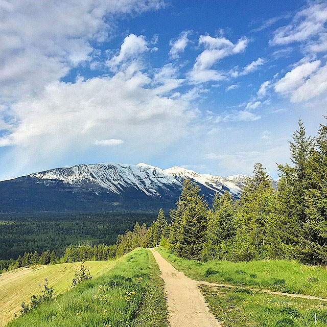 Rotary Trails in Golden. Photo: @tourismgolden via Instagram