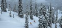 Fernie Alpine Resort