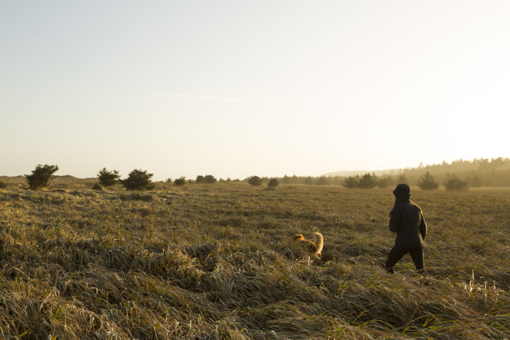 A woman and her dog hike through long golden grass.