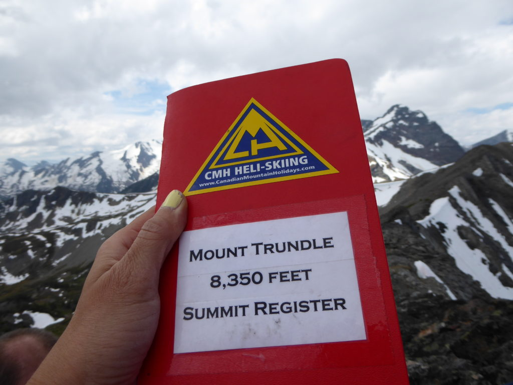 The register at the summit of Mount Trundle.