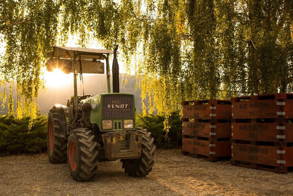 A green tractor and wooden pallets sit under lush green willow trees at sunset.