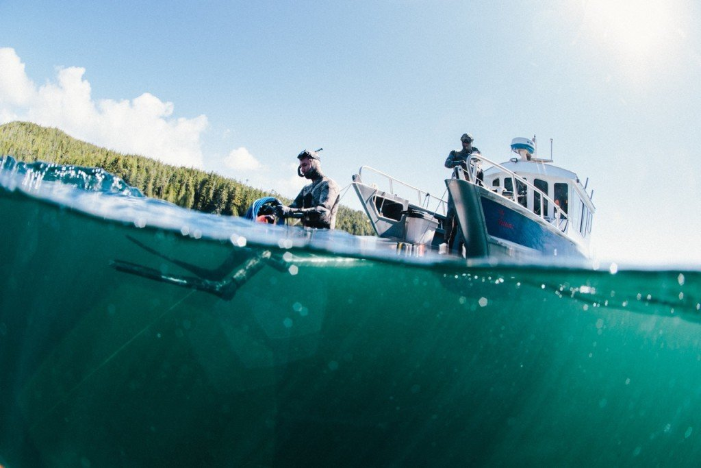Getting ready for a dive in the Queen Charlotte Strait. Photo: @jeremykoreski