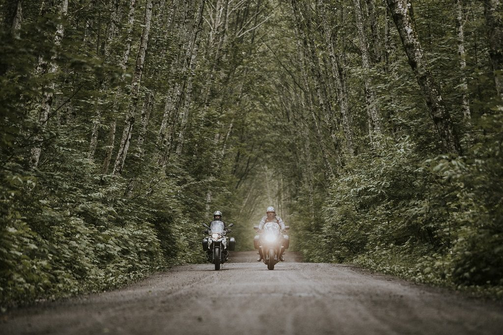 Two motorcyclists travel down a dirt road lined on each side with dense trees.