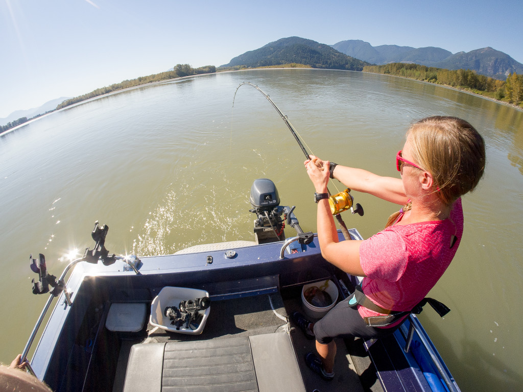 Sturgeon fishing on the Fraser River.