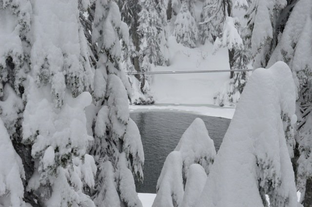 Snow-covered pond at Grouse Mountain. Photo: SYinc