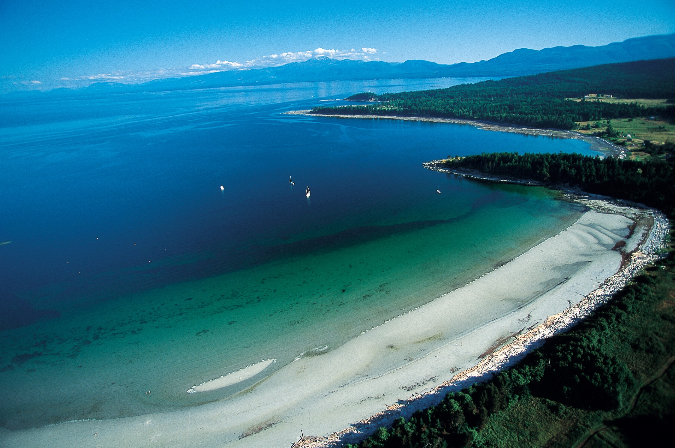 A stretch of beach in the Gulf Islands with turquoise waters on one side and forest on the other.