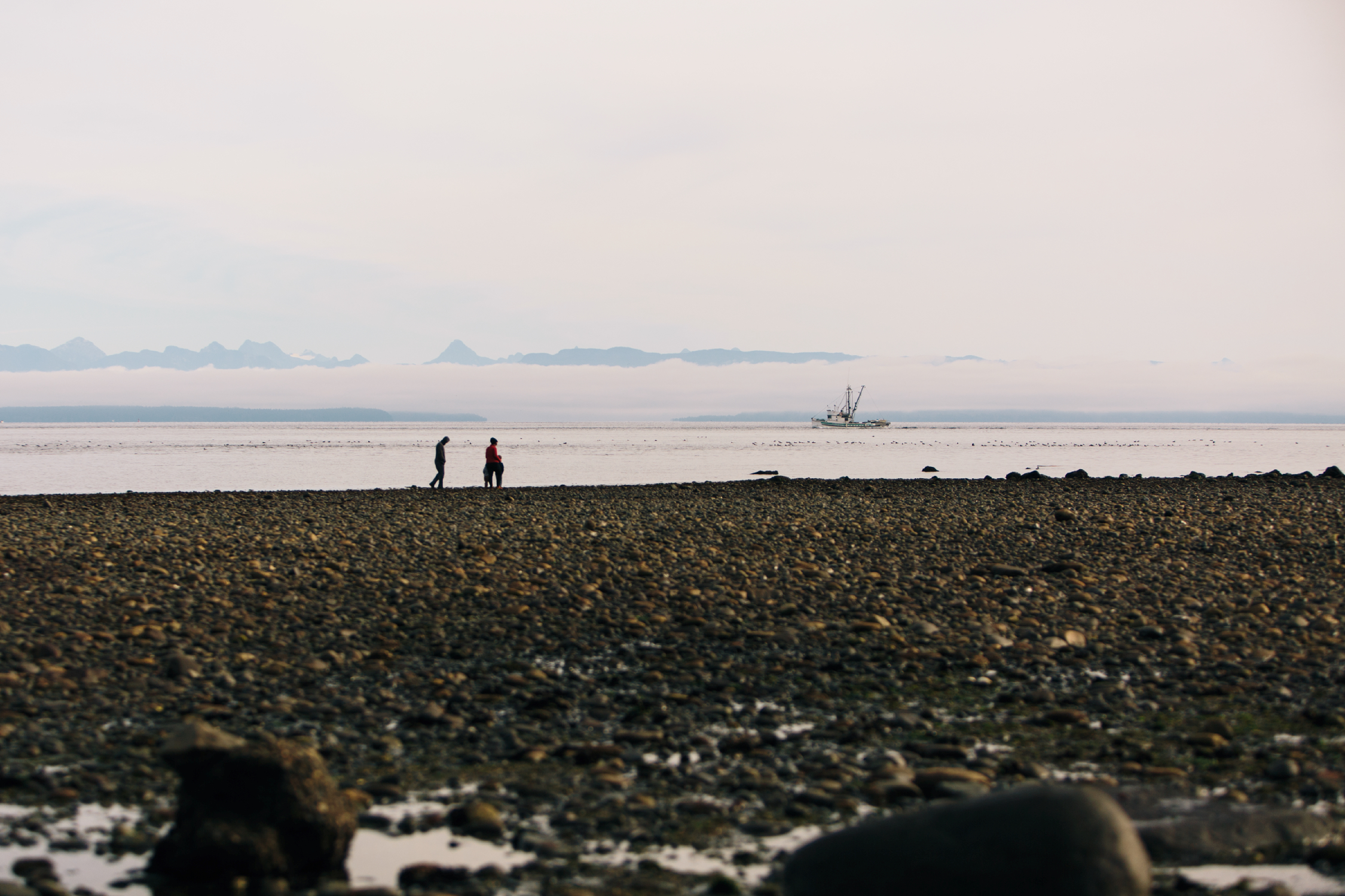 Beach walks in Campbell River