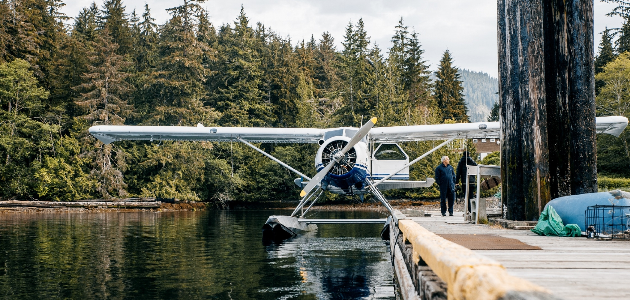 A seaplane is docked in a densely forested area.