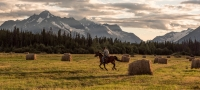 Horseback Riding & Ranches