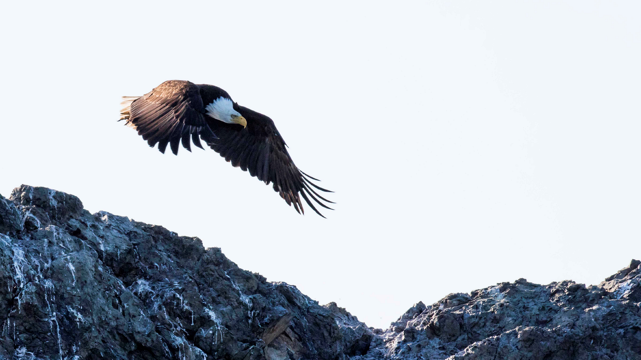 Your browser does not support the <video> tag