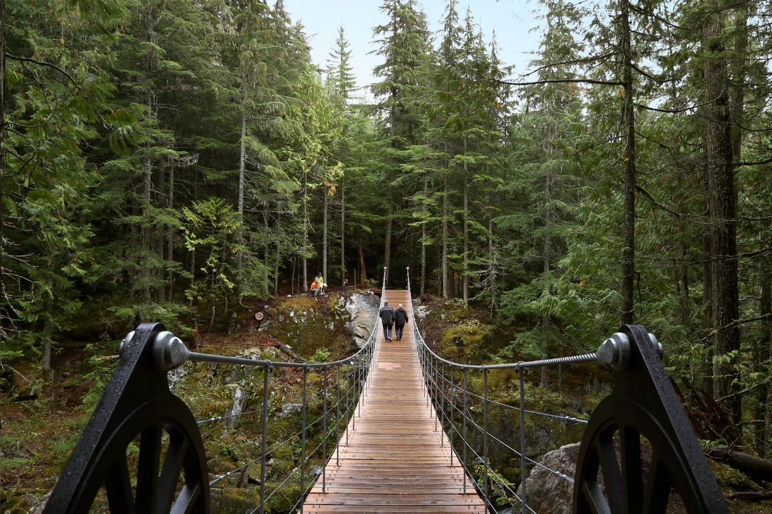 Two people walking across a bridge into a forest.