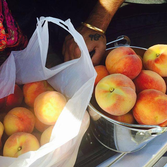 A plastic bag and stainless steel pot, both filled with fresh peaches.