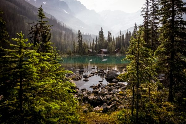 Cabins at Lake O'Hara in the mountains of Yoho National Park