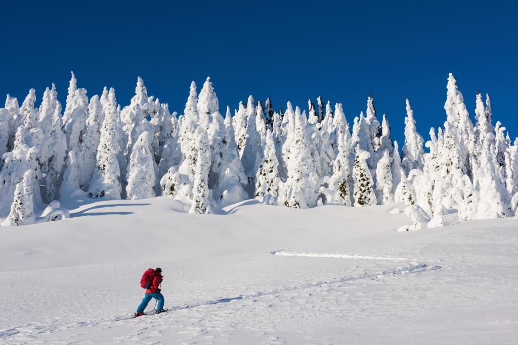 Backcountry skiing in Whistler | Tourism Whistler/Mike Crane