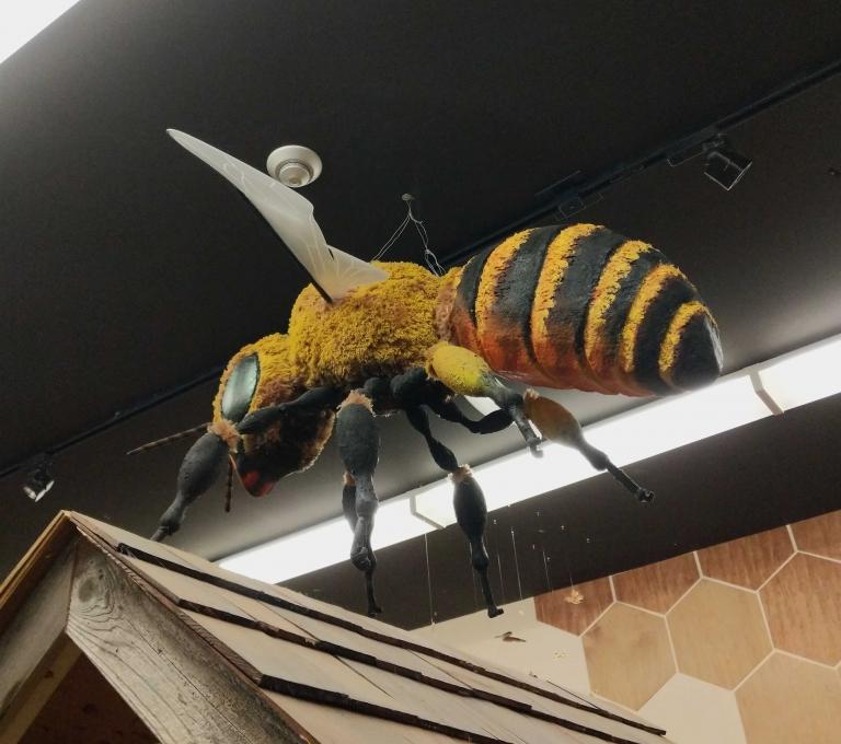 Honeybee Centre in Surrey | Visnja Milidragovic