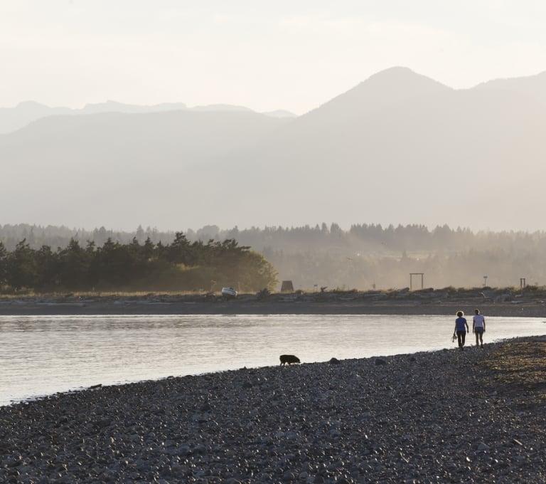 Beach walk with a dog on Goose Spit in Comox | Boomer Jerritt