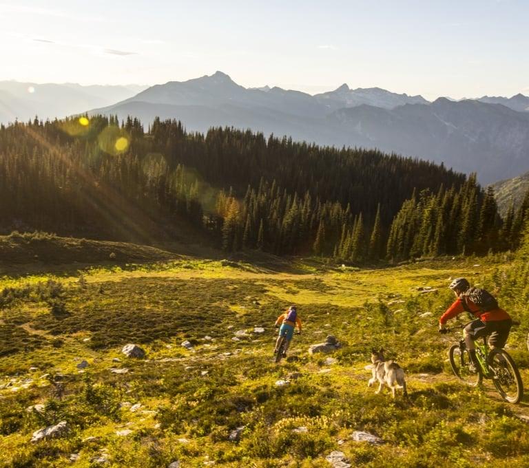Mountain biking on Mount McCrae near Revelstoke | Ryan Creary
