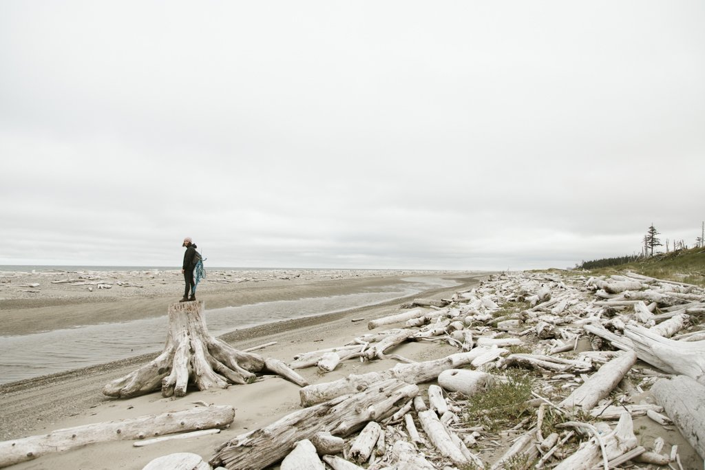 A desolate beach, covered in driftwood, under a grey sky.