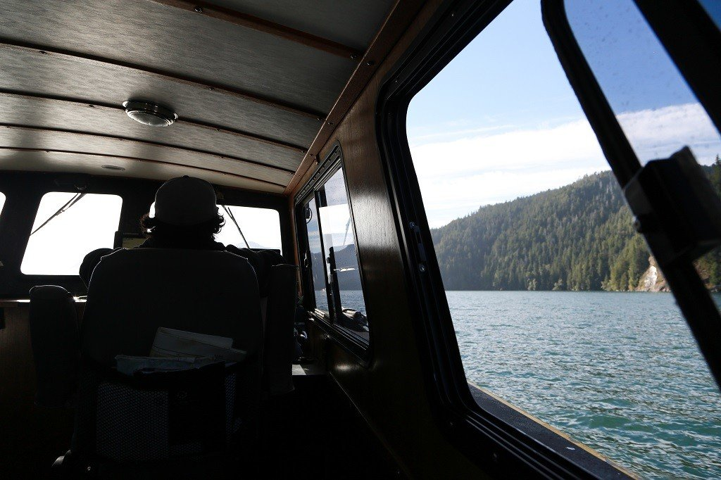 Interior of a boat as it sails past a dense forest.