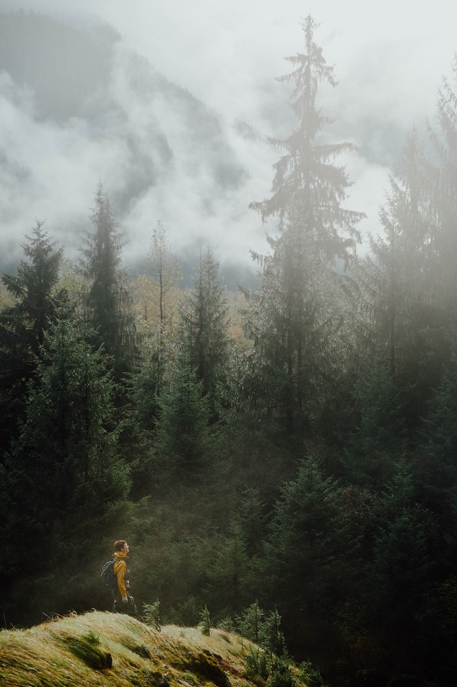 A man hikes through a misty, lush landscape.
