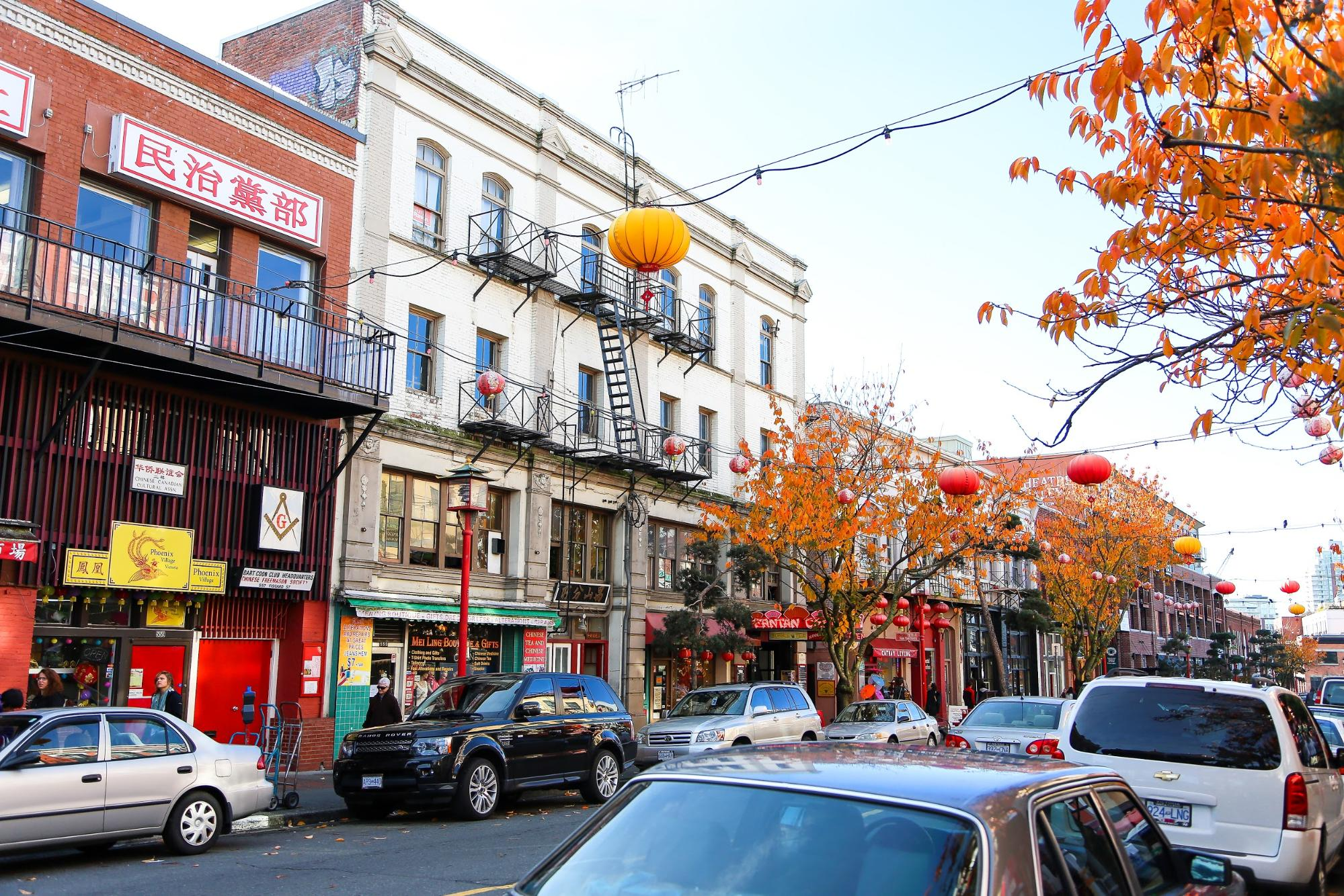 Fall foliage and colourful lanterns line a city street.