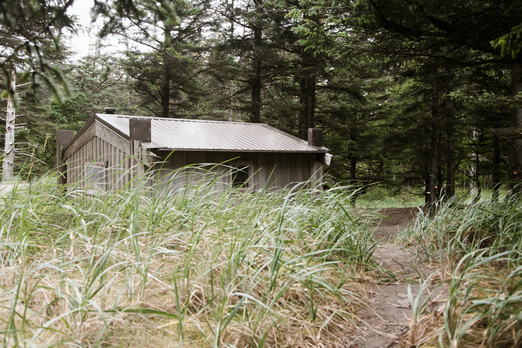 A small shelter sits surrounded by trees and long grass.