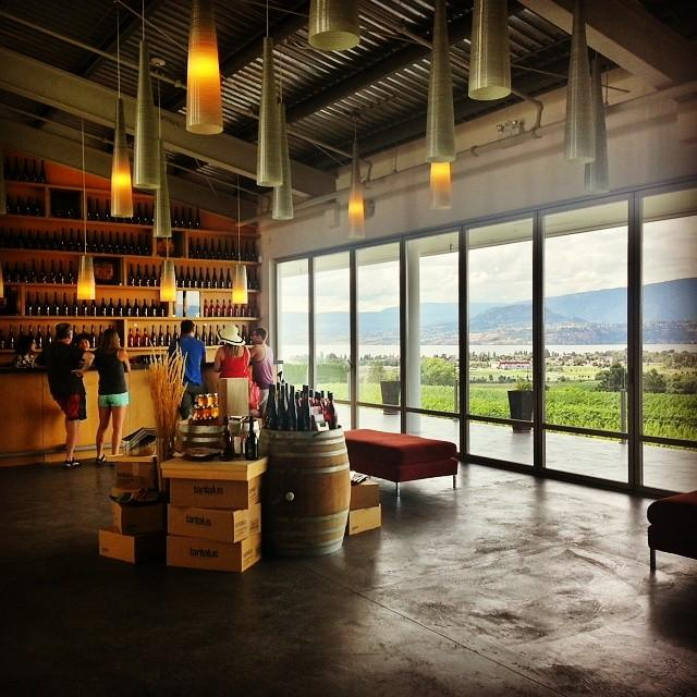 A winery tasting room with floor to ceiling windows overlooking the vineyard.