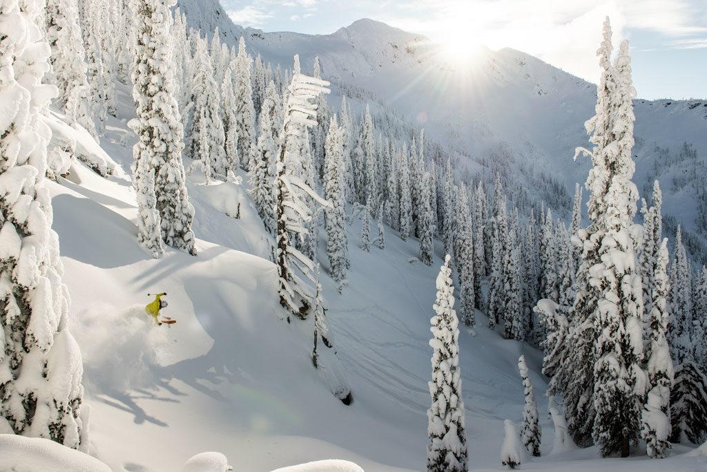 A man skis through a terrain of fresh powder.