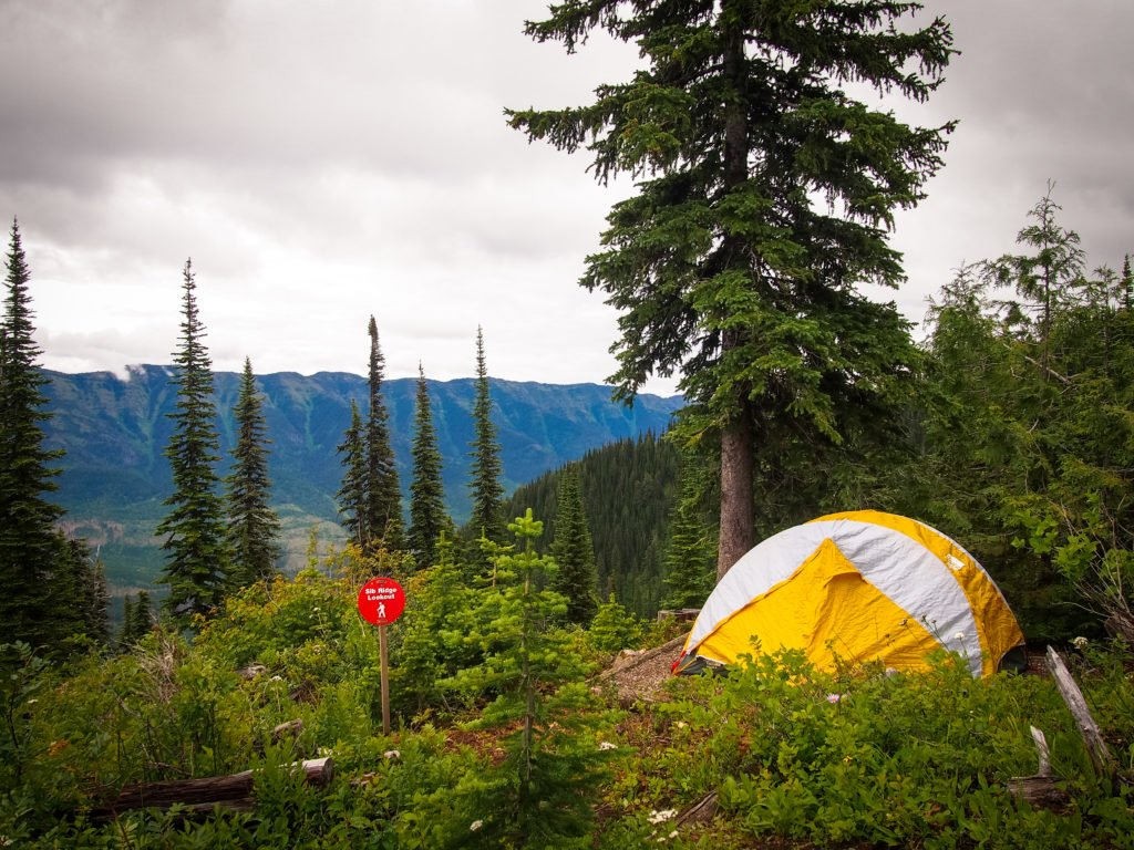 A yellow tent nestled in a dense forest.