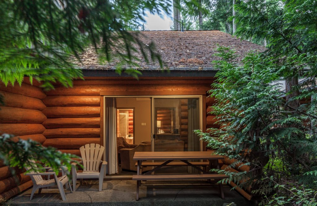 A secluded log cabin surrounded by trees.