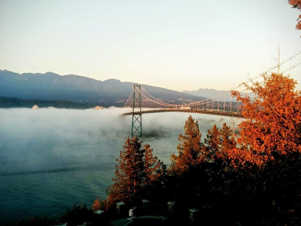 Fog rolls over a bridge, towards a bank of trees with bright fall foliage.
