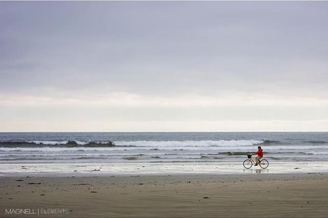 A cyclist pedals across a remote beach landscape.
