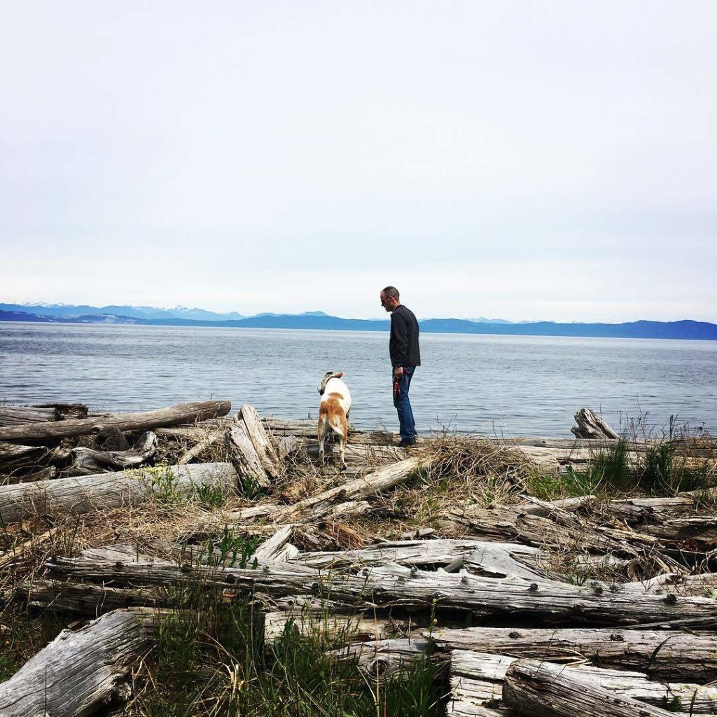 A man and his dog explore driftwood along a beach that overlooks a mountain range.
