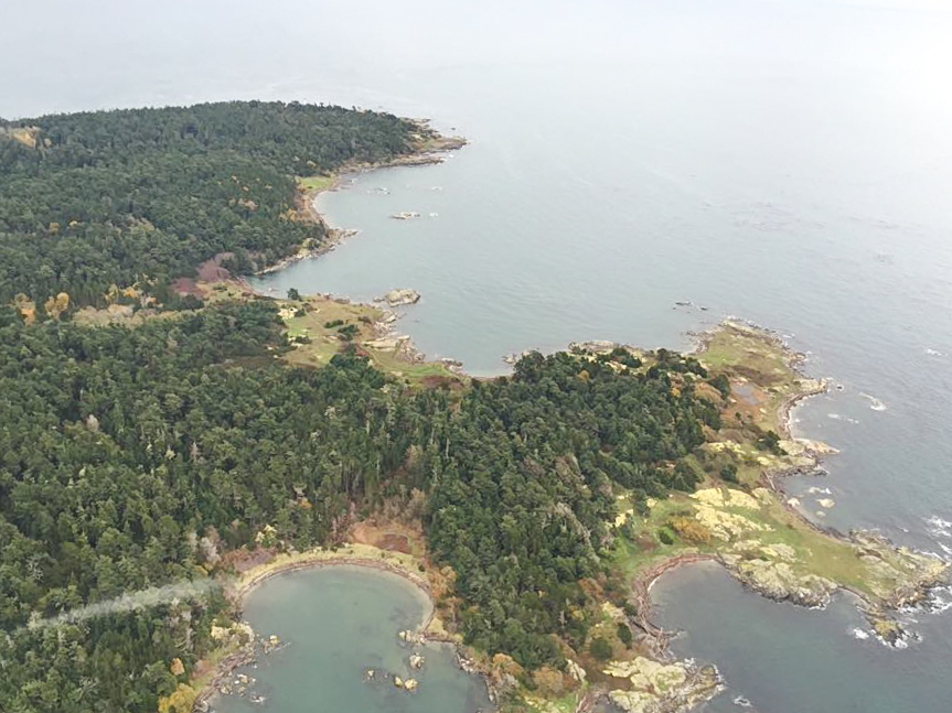 A bird's eye view of Vancouver Island's coastline from a float plane.