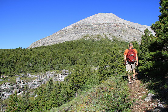 A man wearing a backpack hikes a tree-lined trail towards a large stone mountain.