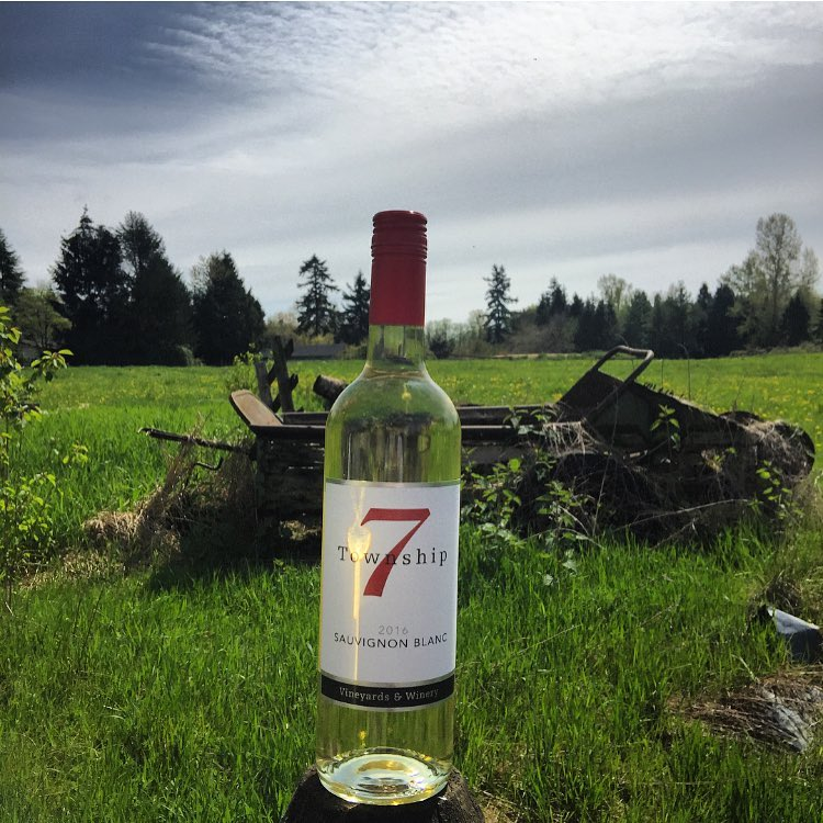 A bottle of Township 7 Sauvignon Blanc sits is a lush green meadow.