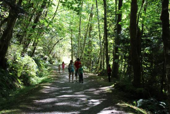 People walk along a wooded trail in the forest.