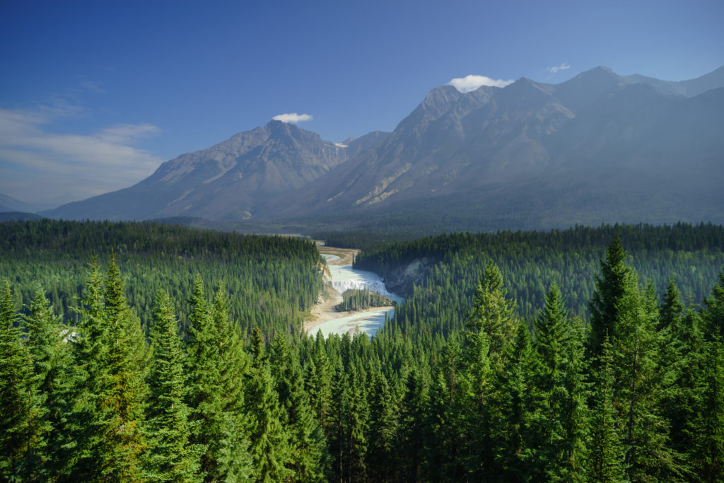 Wapta Falls wind through a dense forest, towards a rocky mountain range.