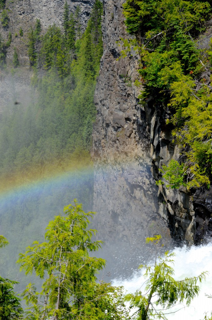 A rainbow has formed over a water-carved canyon surrounded by trees.
