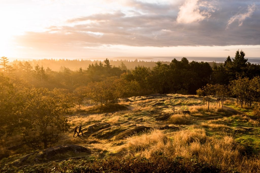 Two hikers traverse a lush landscape under a golden sunset.
