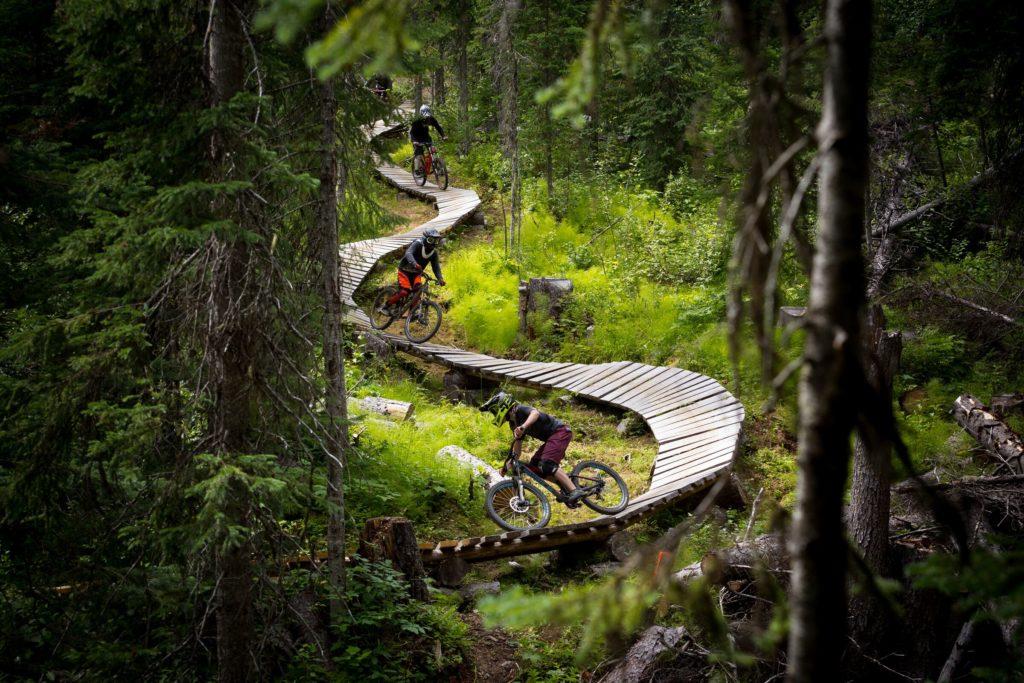 A wooden mountain bike trail winds through dense vegetation.